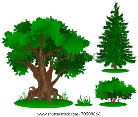 vector trees series (in summer, autumn, spring, winter)