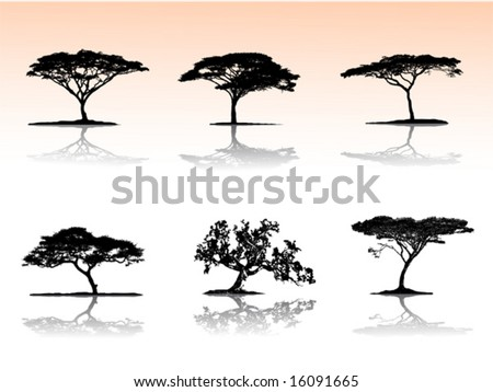 Vector trees with reflection