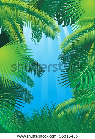 vector tropical background