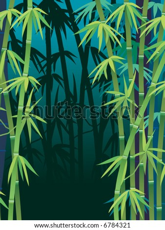 Vector, tropical bamboo forest