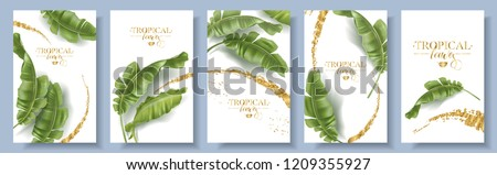 Vector tropical banners set. Banana leaf with gold splash on white background. Exotic botany for cosmetics, spa, perfume, health care products, aroma, tourist agency. Best as wedding invitation design