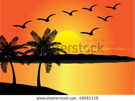 vector tropical beach with