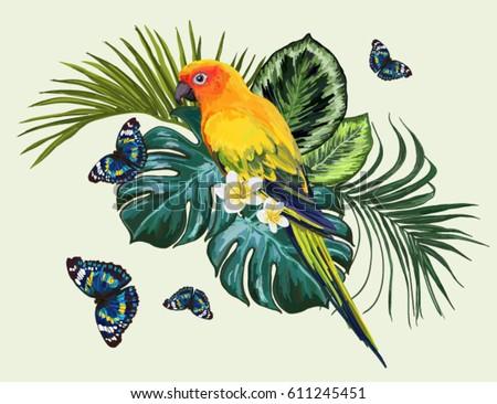 vector tropical  composition