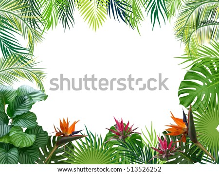 vector tropical jungle