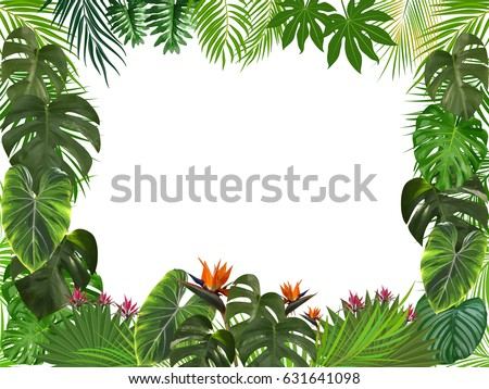 Vector tropical jungle background with palm trees and leaves. #631641098