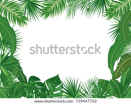 Vector tropical jungle background with palm trees and leaves on white background.
