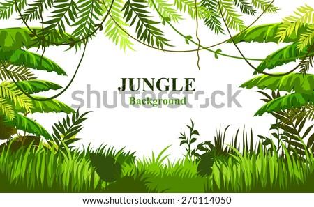 vector tropical landscape