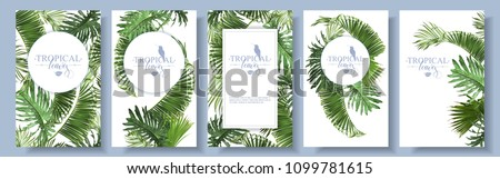 Vector tropical leaves banners set on white background. Exotic botanical design for cosmetics, spa, perfume, health care products, aroma, wedding invitation. With place for text