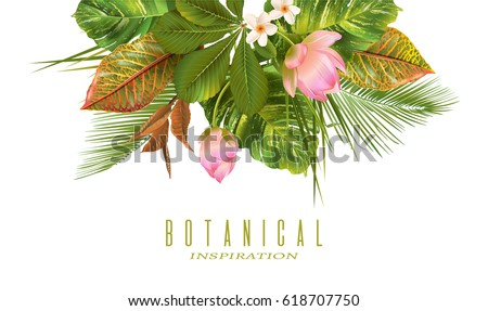 vector tropical plants banner