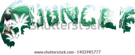 Vector tropical rainforest Jungle forest illustration witn harpy eagle