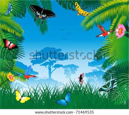 vector tropical rainforest with humming-birds and butterflies