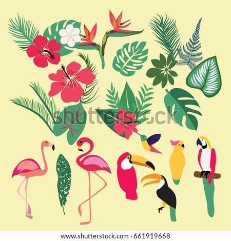 Vector Tropical set of tropical elements. Palm leaves, tropical plants, flowers, leaves, birds, birds, flamingo, toucan, parrots