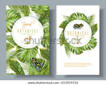 vector tropical vertical