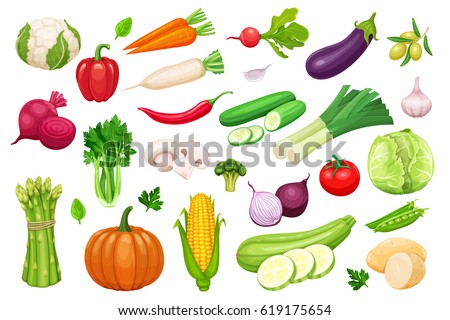 Vector vegetables icons set in cartoon style. Collection farm product for restaurant menu, market label. #619175654