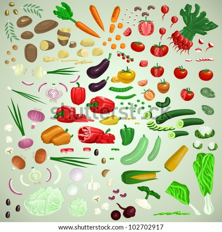 Vector vegetables set, raw vegetarian food collection, graphic designer's friend edition
