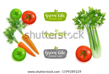 Vector Vegetables with concept logo for Organic Shop isolated on white background. Editable template for Vegetal logo brand presentation. Organic Food top view green apple carrot, tomatoes and selery #1199289229