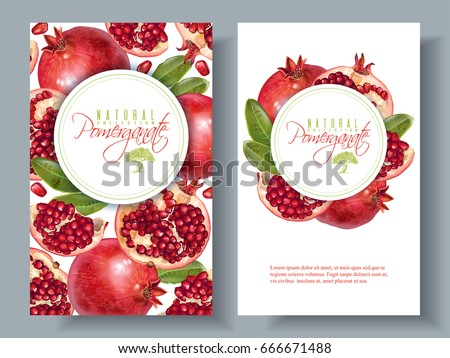 Vector vertical banners with pomegranate fruits on white background. Design for cosmetics, spa, pomegranate juice, health care products, perfume. Can be used as dessert menu or farmers shop background