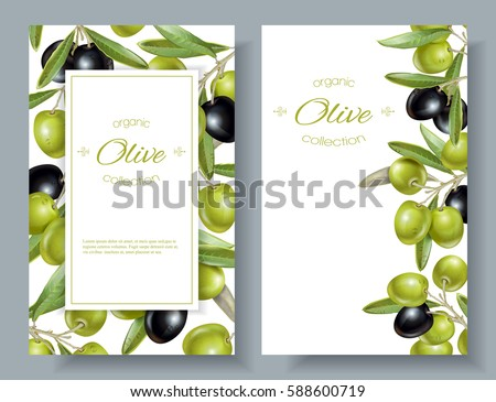 Vector vertical banners with ripe black and green olives on white background. Design for olive oil, olive packaging, natural cosmetics, health care products. With place for text