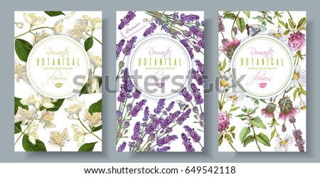 Vector vertical wild flowers and herbs banners