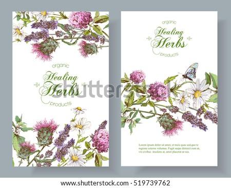 vector vertical wild flowers