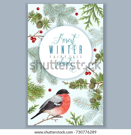 Vector vintage banner with winter forest branches and bullfinch. Highly detailed winter design for greeting card, Christmas party invitation, holiday sales. Can be used for poster, web page, packaging