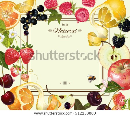 vector vintage fruit and berry