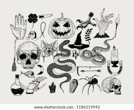 Vector vintage hand drawn Halloween graphics. Pumpkin, skull, witch, snake, candle, bat, spider,poison, spell, grave.