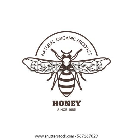 vector vintage honey label