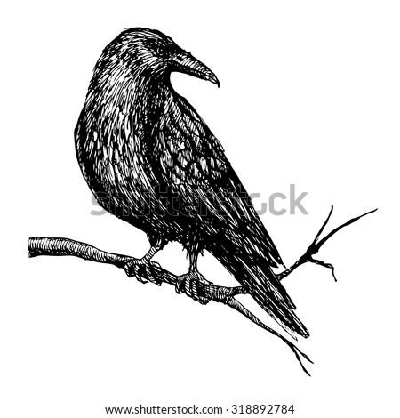 vector vintage raven hand