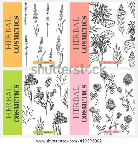 Vector vintage template label with hand draw flowers and herbs. Layout, mockup design for cosmetics shop, beauty salon, natural and organic products. Organic plants sketch background.