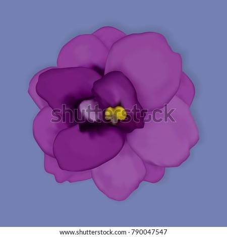 vector violet flower