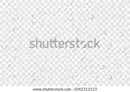vector water drops on glass