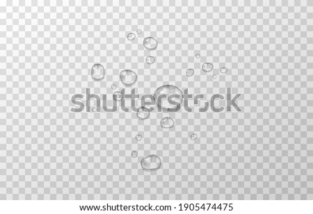 Vector water drops. PNG drops, condensation on the window, on the surface. Realistic drops on an isolated transparent background. PNG.