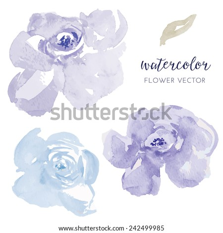 vector watercolor flowers blue