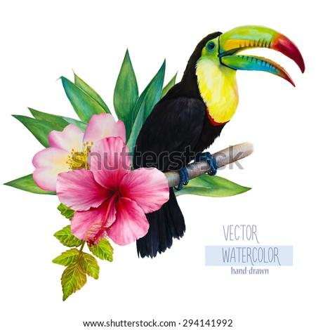 vector watercolor hand drawn