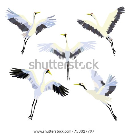 vector watercolor set of