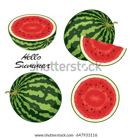 vector watermelon set isolated on white background. juicy ripe watermelon slices and whole watermelons for healthy food backgrounds. hello summer illustration.