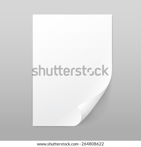 Vector White Blank Paper Page Sheet with Corner Curl Isolated on Background