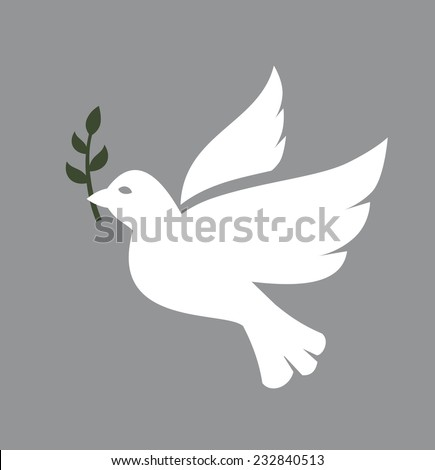 vector white Dove icon on white background