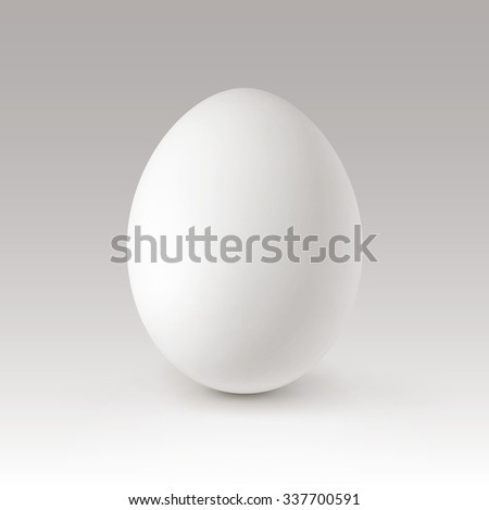 Vector White Egg Isolated on Background