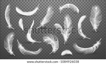 Vector white feathers collection, set of different falling fluffy twirled feathers, isolated on transparent background. Realistic style, vector 3d illustration. - Shutterstock ID 1084926038