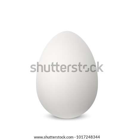 Vector white single realistic animal egg. Chicken egg isolated with soft shadows on white background. Template for Easter holiday. 3D illustration