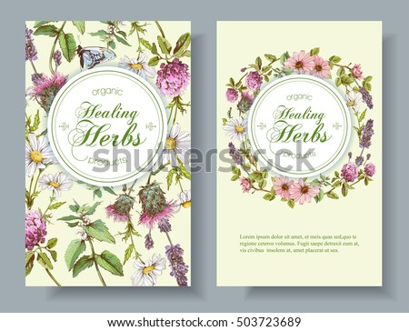 Vector wild flowers and herbs vertical banner. Design for herbal tea, natural cosmetics, honey, health care products, homeopathy, aromatherapy. With place for text