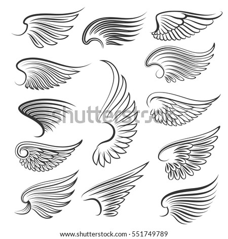 vector wings isolated on white...