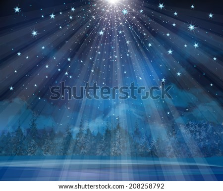 Vector winter background with lights and stars. #208258792