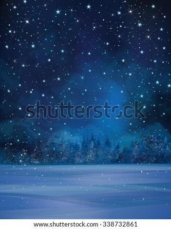 vector winter night scene