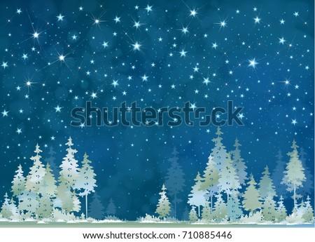 vector winter night starry sky