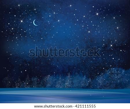vector winter wonderland night