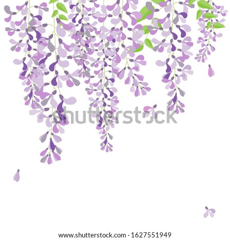 Watercolor Wisteria Transparent Background , Free Transparent Clipart -  ClipartKey