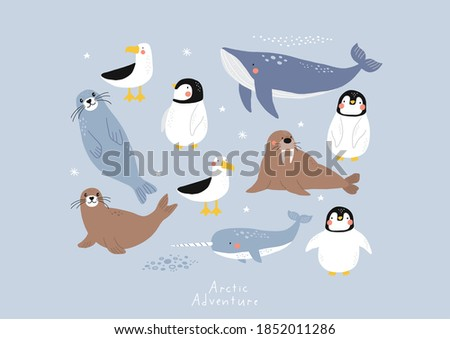 Vector with cute Arctic animals - Polar bear, seal, penguin, walrus, whale, fish, narwhal, albatross.  Cartoon characters Arctic and antarctic animals